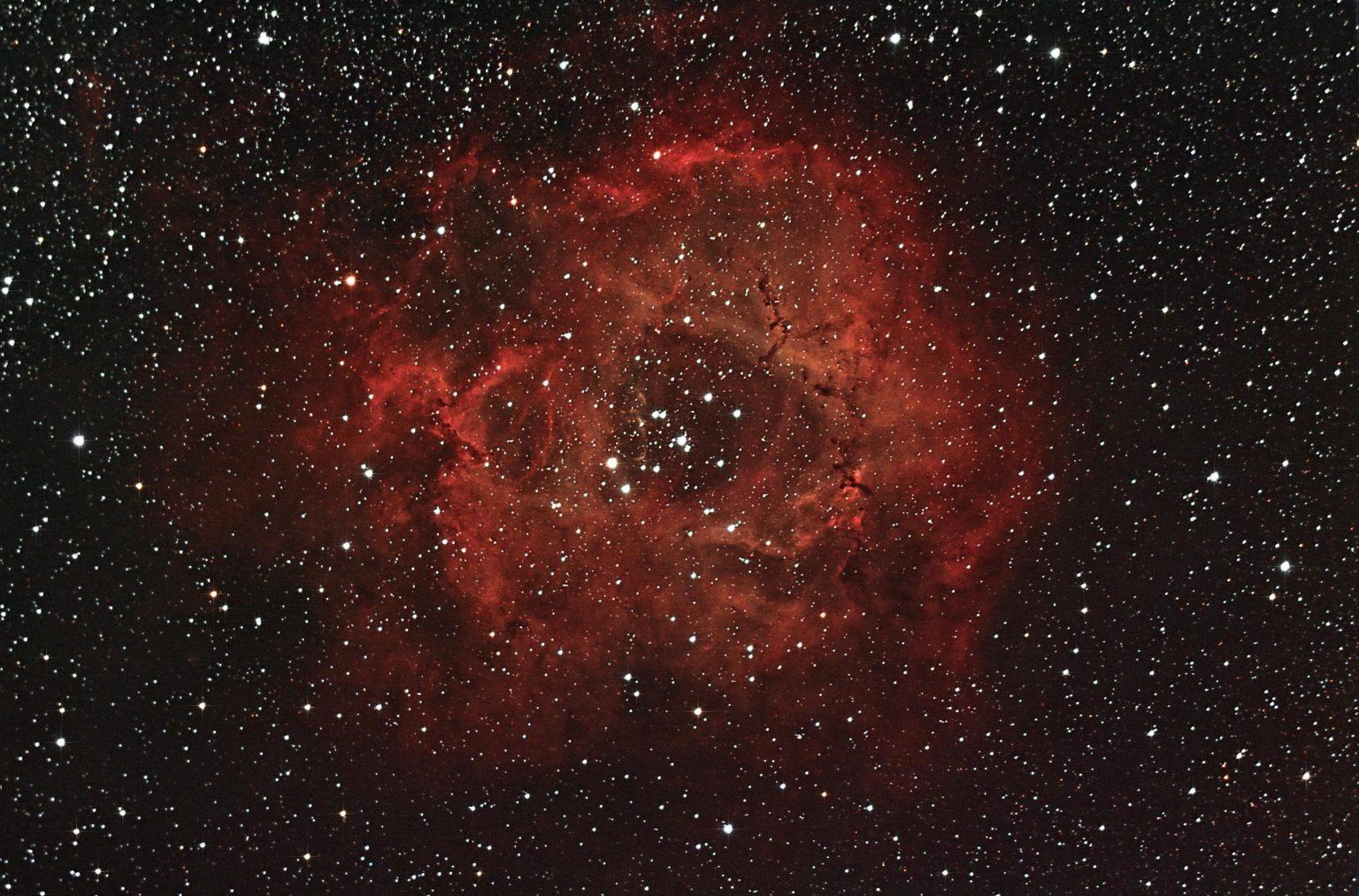 Rosette Nebula-John Napper